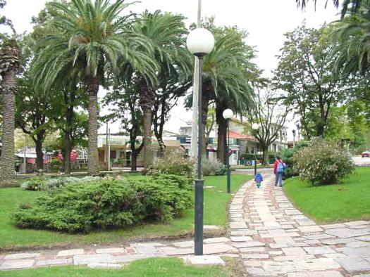 plazaolim