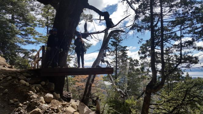 Canopy en Cerro López de Bariloche
