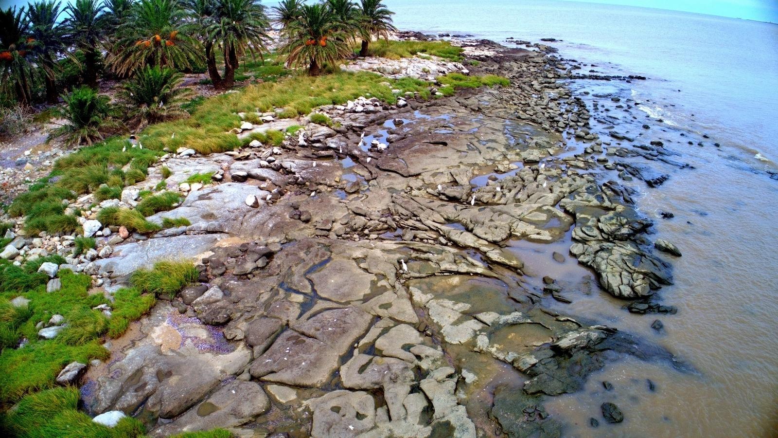 Se distingue con claridad la zona rocosa de la Isla