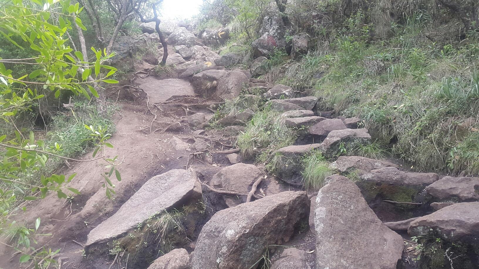 El trayecto para subir el Cerro Pan de Azúcar presenta muchas rocas y es conveniente tomar precauciones