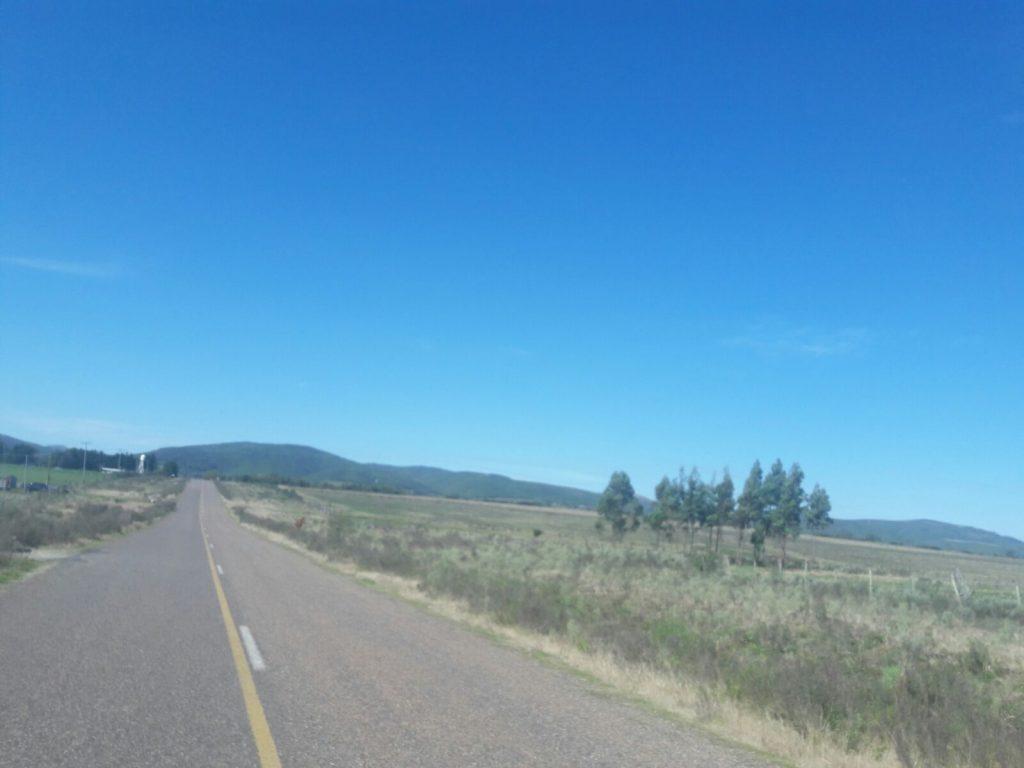 Ruta 81 rumbo a Aguas Blancas en Lavalleja