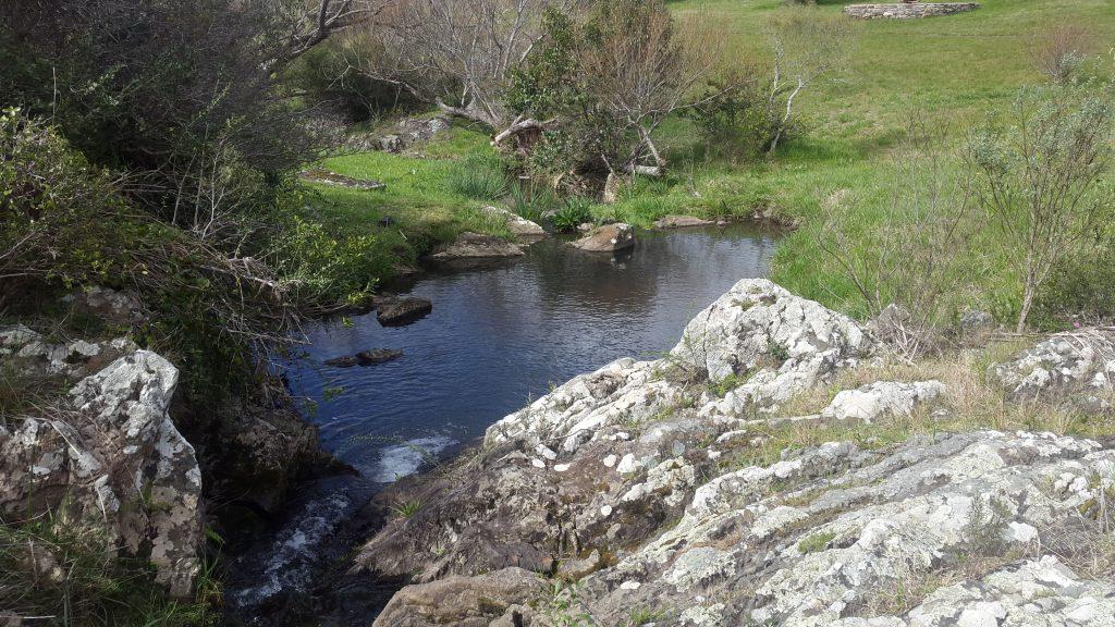 La buena energía y la armonía se aprecia en el Valle del Hilo de la Vida