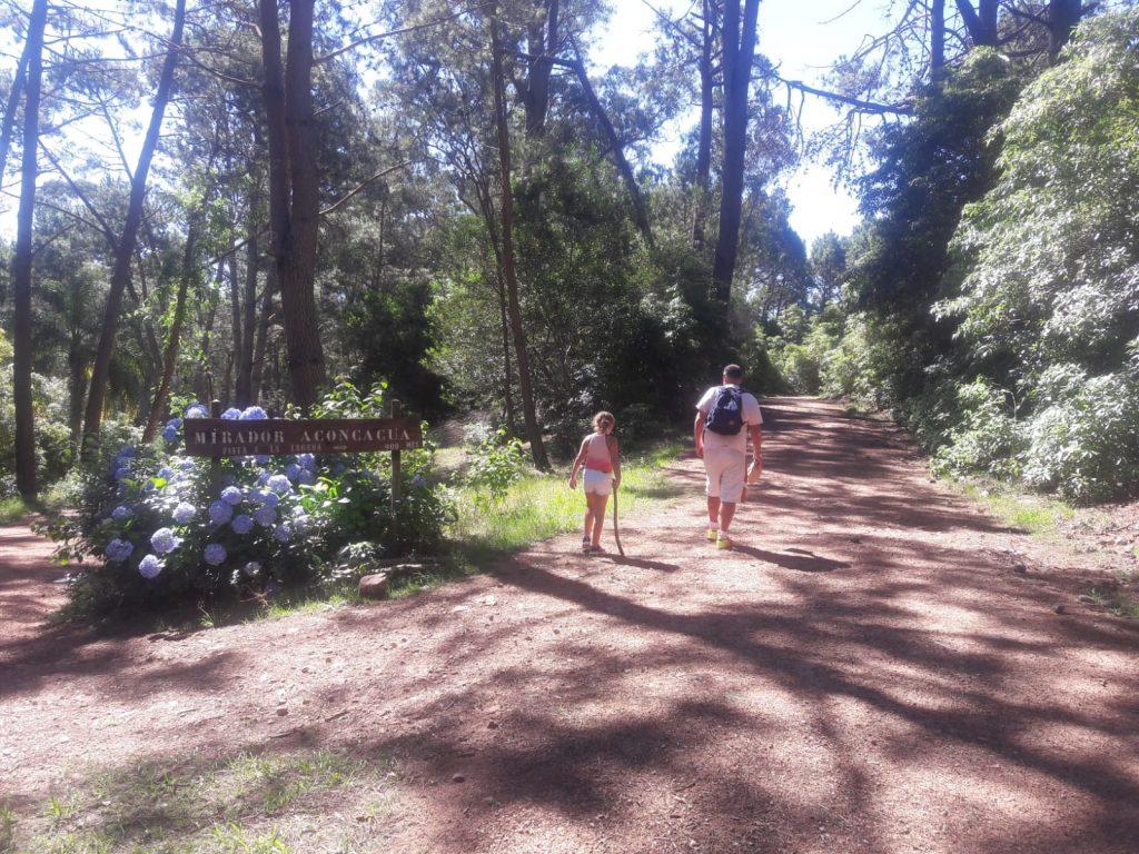 Hacia el Mirador Aconcagua en el Arboretum Lussich