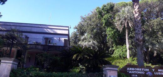 Nos fuimos de visita al Arboretum Lussich, hermoso paraje en Punta Ballena