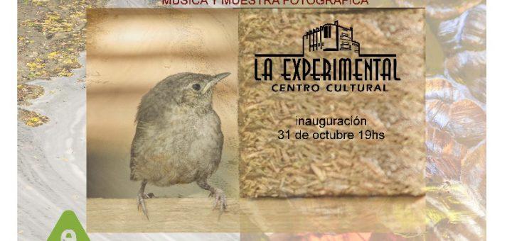 Conexión Hombre Naturaleza: exposición fotográfica en La Experimental