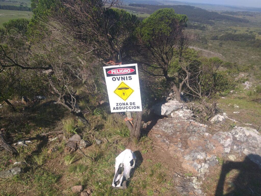 Ovins en Cerro Aguiar?